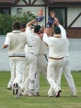Cricket_celebrationsm